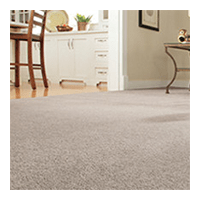 Minneapolis St.Paul Carpet Cleaning