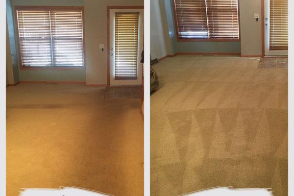 edina-carpet-cleaning-job
