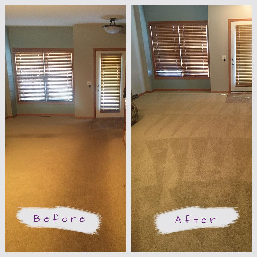 The Best Carpet Cleaning Service In St Paul Amp Minneapolis Mn