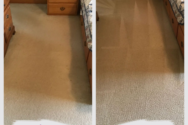 maple-grove-carpet-cleaning
