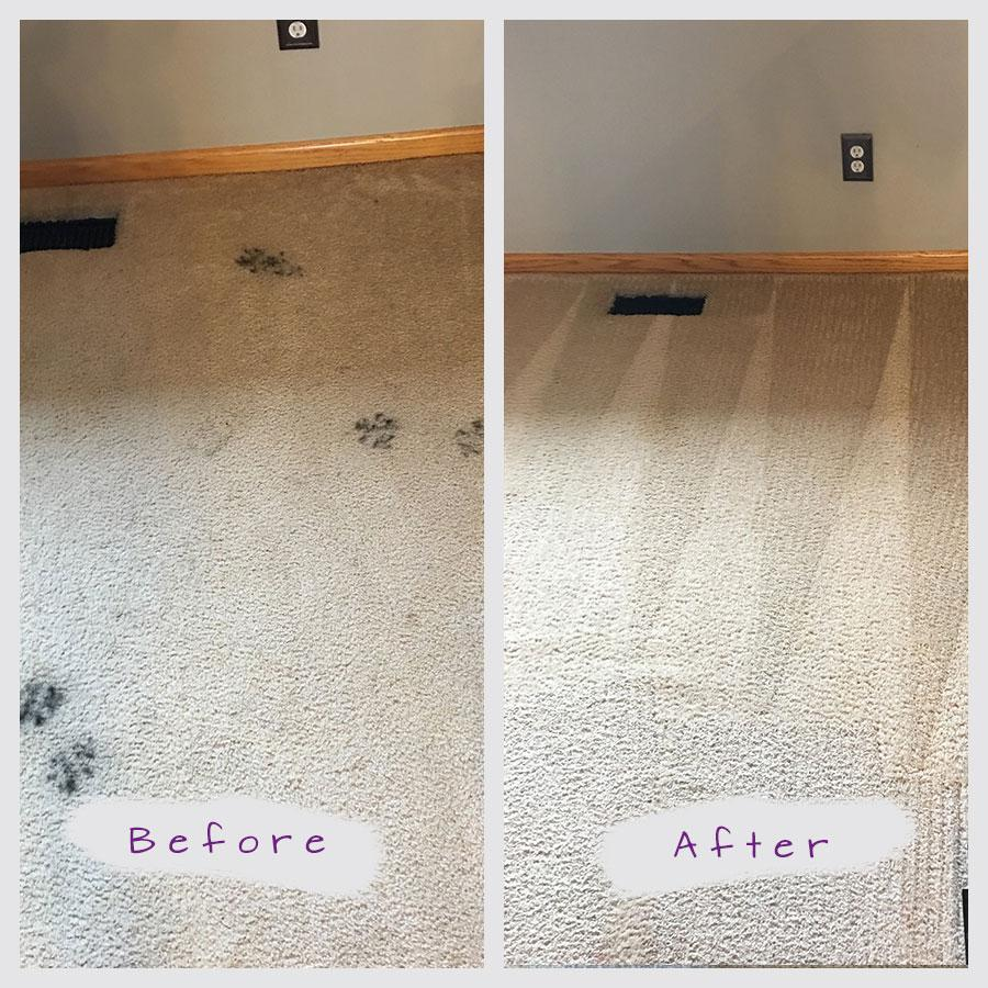 The Best Carpet Cleaning Service In StPaul Minneapolis MN - Discount tile mn