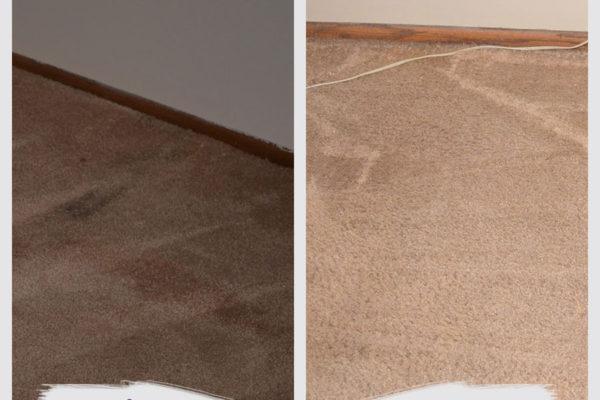 st-paul-carpet-cleaning-job