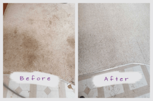 Woodbury Carpet Cleaning Service